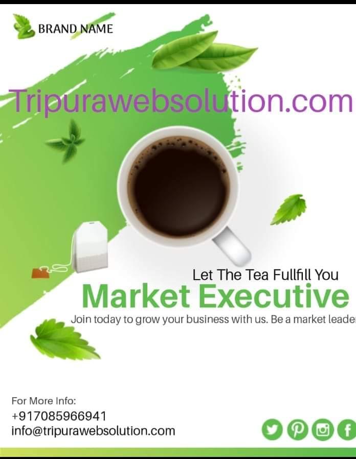 Marketing Executive Tripurawebsolution.com